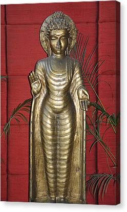 Buddha 1 Canvas Print by Vijay Sharon Govender