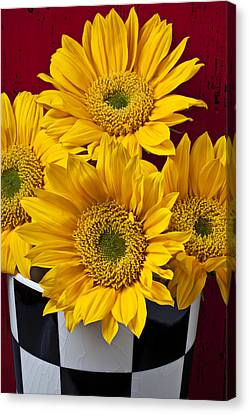 Bunch Of Sunflowers Canvas Print by Garry Gay