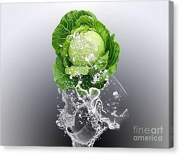 Cabbage Splash Canvas Print by Marvin Blaine
