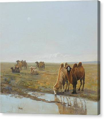 Camels Along The River Canvas Print by Chen Baoyi