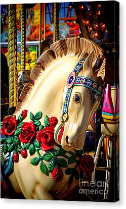 Carousel Horse  Canvas Print by Olivier Le Queinec