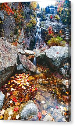 Cascades Of Color Canvas Print by George Oze
