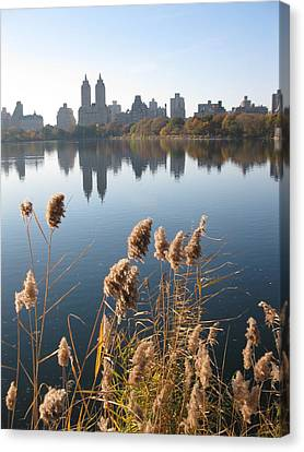Central Park Canvas Print by Yannick Guerin
