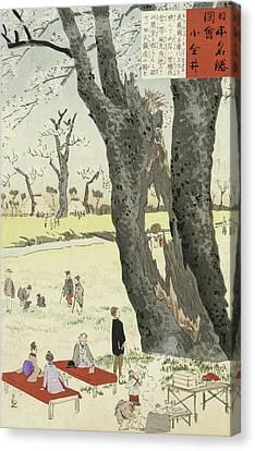 Cherry Blossoms Canvas Print by Kobayashi Kiyochika