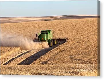 Combine Harvesting Wheat Canvas Print by Inga Spence
