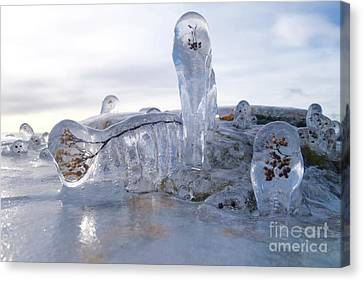 Covered In Ice Canvas Print by Sandra Updyke