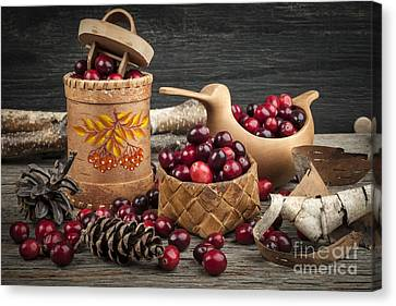 Cranberries Still Life Canvas Print by Elena Elisseeva