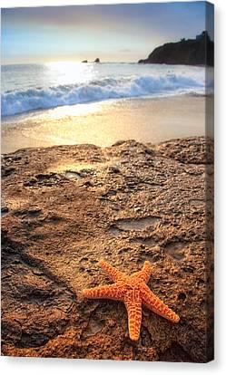 Crescent Bay Laguna Beach California Canvas Print by Utah Images