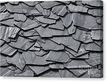 Dark Schist Blades Canvas Print by Carlos Caetano