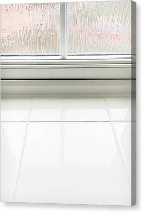 Double Glazed Window Canvas Print by Tom Gowanlock