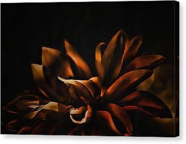Elegance Canvas Print by Bonnie Bruno