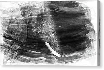 Elephant Canvas Print by Martin Newman