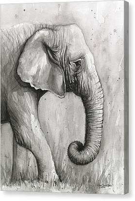 Elephant Watercolor Canvas Print by Olga Shvartsur