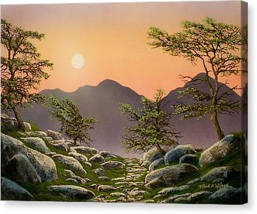 Evening Moonrise Canvas Print by Frank Wilson