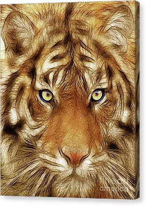 Eye Of The Tiger Canvas Print by Wingsdomain Art and Photography