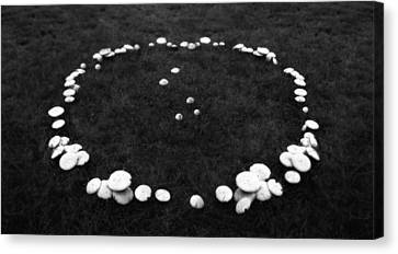 Fairy Ring Canvas Print by Mark Wagoner