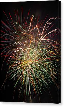 Fantastic Fireworks Canvas Print by Garry Gay