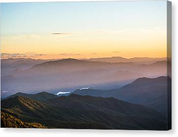 Filtering Light Canvas Print by Shelby Young