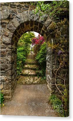 Garden Arch Canvas Print by Adrian Evans