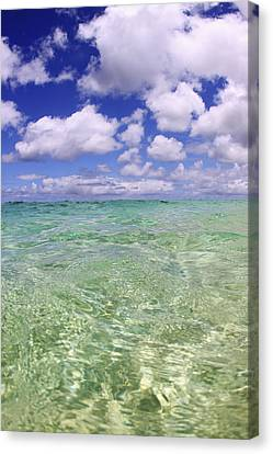 Green Water Seascape Canvas Print by Vince Cavataio