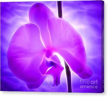 Healing Light Canvas Print by Krissy Katsimbras