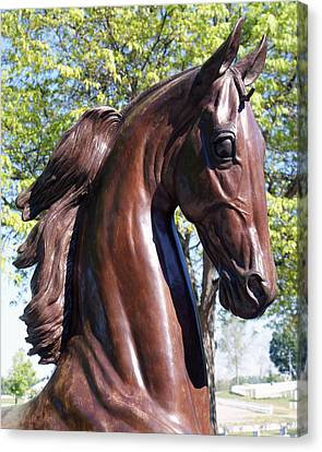 Horse Head In Bronze Canvas Print by Roger Potts