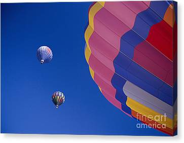 Hot Air Balloons Canvas Print by Greg Vaughn - Printscapes