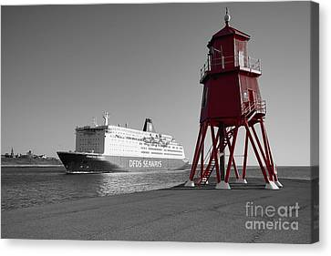 Just Arriving Canvas Print by Stephen Smith