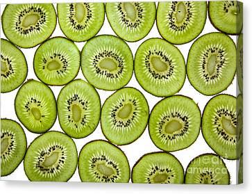 Kiwifruit Canvas Print by Nailia Schwarz