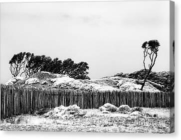 Kure Beach Canvas Print by Jeff Holbrook