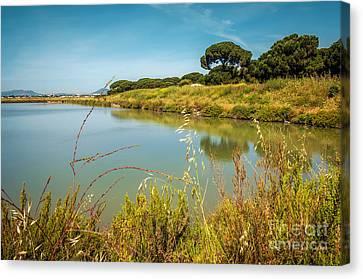 Lake Landscape Canvas Print by Carlos Caetano