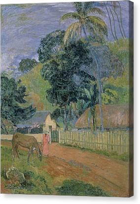 Landscape Canvas Print by Paul Gauguin