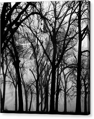 Leta Canvas Print by Ken Walker