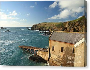 Lizard Point Canvas Print by Carl Whitfield