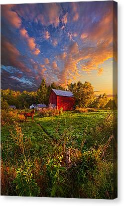 Love's Pure Light Canvas Print by Phil Koch