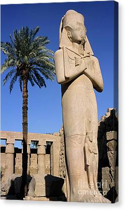 Majestic Statue Of Ramses II At Karnak Temple Canvas Print by Sami Sarkis