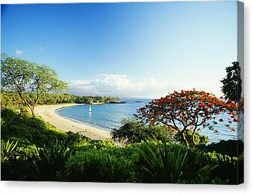 Mauna Kea Beach Canvas Print by Peter French - Printscapes