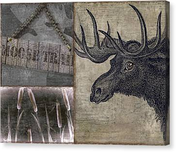 Moose Trail  Canvas Print by Mindy Sommers