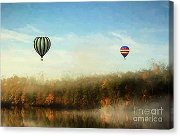 Morning Flight Canvas Print by Darren Fisher