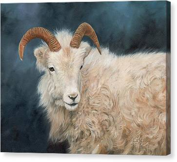 Mountain Goat Canvas Print by David Stribbling