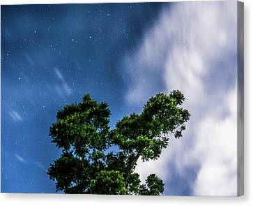 Movement In The Skies Canvas Print by Shelby Young