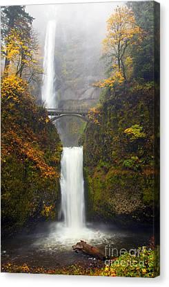 Multnomah Autumn Canvas Print by Mike Dawson