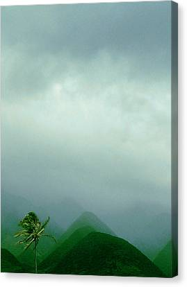 On Mystic Mountain  Canvas Print by James Temple
