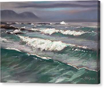 Onrusrivier Beach Canvas Print by Christopher Reid