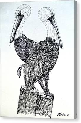 Pelicans Canvas Print by Frederic Kohli