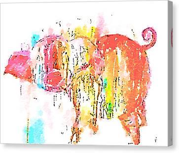 Piggy Wiggy 2 Canvas Print by Vanessa Katz