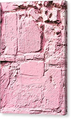 Pink Wall Canvas Print by Tom Gowanlock