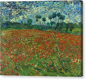 Poppy Field Canvas Print by Vincent van Gogh