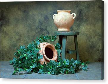 Pottery With Ivy I Canvas Print by Tom Mc Nemar