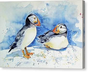 Puffins Canvas Print by Kovacs Anna Brigitta